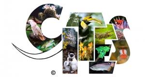 Pristupanje EU-a Konvenciji CITES olakšat će pripremu akcijskog plana Komisije o krijumčarenju divljih biljnih i životinjskih vrsta
