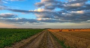 Europskim poljoprivrednicima vraćeno 410 milijuna eura iz proračuna za zajedničku poljoprivrednu politiku (ZZP)